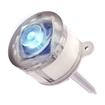Maxsa - Solar Lamp