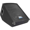Seismic Audio - 10 Floor Stage Monitor Wedge Style with Titanium Horn - Black