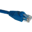 Rosewill - 3ft. /Network Cable Cat 6 /Blue - Blue