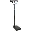 Health o Meter - Professional Upright Scale - Black - Black