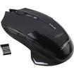 AGPtek - Wireless Optical Backlit 2500DPI USB 2.4GHz Gaming Mouse with DPI Switch for Laptop PC - Black - Black