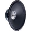 Selenium - 250 W Speaker