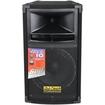 DJ-Tech - Vegas 2-way 300 W Speaker - Pack of 1