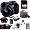 Sony - Bundle DSC-RX10/B Cybershot 20.2 MP Still Camera with 3-Inch LCD Screen (Black)