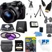 Sony - Cyber-shot DSC-RX10 Digital Camera 64 GB SDXC Card