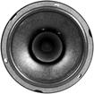 db - S1 60 Car Speaker