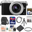 Panasonic - DMC-GM1 Micro Four Thirds Digital Camera+12-32mm Lens+64GB Card+Battery+Case+Filter+Flex Tripod Kit
