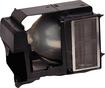 InFocus - Replacement Lamp - Black