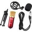 AGPtek - Professional Audio Condenser Recording Microphone Mic Studio Sound with Shock Mount - Red