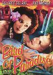 Bird Of Paradise (dvd) 13503817