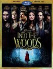 Into The Woods [includes Digital Copy] [blu-ray] 1437171