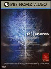 e² Energy (DVD) (Enhanced Widescreen for 16x9 TV) (Eng)
