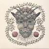 Akron/Family [LP] - VINYL