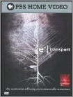 e² Transport [TV Series] - DVD 2008