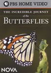 Nova: The Incredible Journey Of The Butterflies (dvd) 17671636