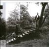 Timber Timbre  - Vinyl