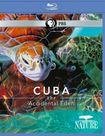 Cuba: The Accidental Eden [blu-ray] 18812626