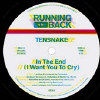 In the End (I Want... [12inch Vinyl Disc]... - 12-Inch Single