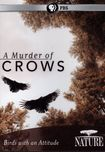 Nature: A Murder Of Crows (dvd) 18881418