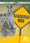 Nature: Kangaroo Mob (dvd) 19861376
