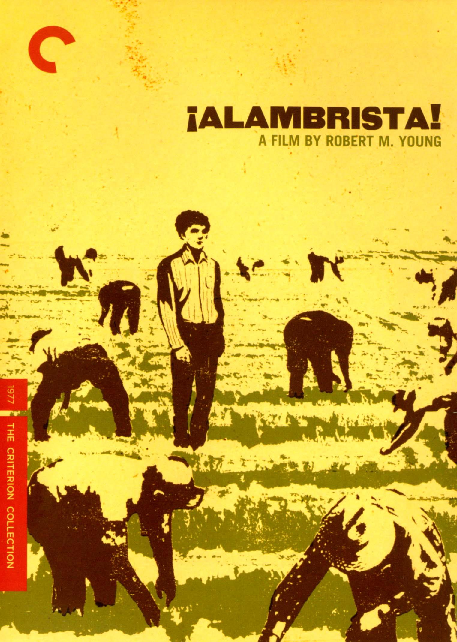 Alambrista! [criterion Collection] (dvd) 19890977