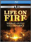 Life On Fire: Wildlife On The Volcanos Edge (2 Disc) (blu-ray Disc) 21000227
