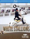 Nature: Legendary White Stallions [blu-ray] 21282136