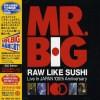 Raw Like Sushi 100 - CD