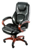 Z-Line Designs - Leather Executive Chair - Black