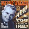 How Do You Think I Feel-The Singer & His Songs - CD
