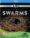 Nature: The Gathering Swarms [blu-ray] [2014] 25212308