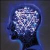 The Mindsweep [Slipcase] - CD