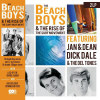 Beach Boys & The Rise Of The Surf Movement (Uk) - VINYL