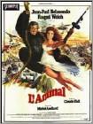 L'Animal (DVD)