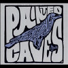 Painted Caves - CD