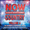 Now That's What I Call Country, Vol. 4 - CD - Various