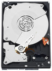 WD - Black 250GB Internal Serial ATA Hard Drive for Laptops (OEM/Bare Drive) - Black