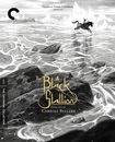 The Black Stallion [criterion Collection] (dvd) 27920222