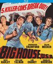Big House, U.s.a. [blu-ray] [1955] 28610324