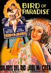 Bird Of Paradise (dvd) 28838421