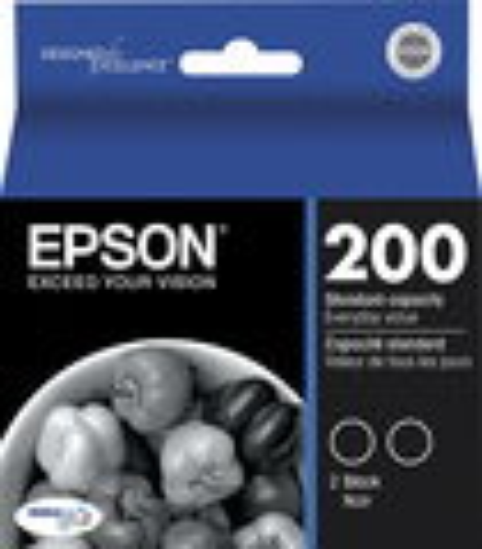 Epson - DURABrite 200 Ink Jet Cartridge Twin-Pack T200120-D2 - Black