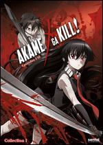 Akame Ga Kill 1 (DVD) (3 Disc)