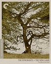 The Emigrants/the New Land: Two Films By Jan Troell [criterion Collection] [blu-ray] [2 Discs] 29978163