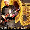 Just A Vibration [cd] 30023834