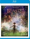 Beasts Of The Southern Wild [blu-ray] 30962194