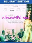 A Beautiful Now [blu-ray] 32263384