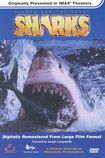 Search For The Great Sharks (dvd) 3655707