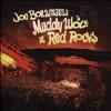 Muddy Wolf at Red Rocks - CD