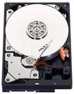 WD - Blue 250GB Internal Serial ATA Hard Drive for Desktops (OEM/Bare Drive) - Silver
