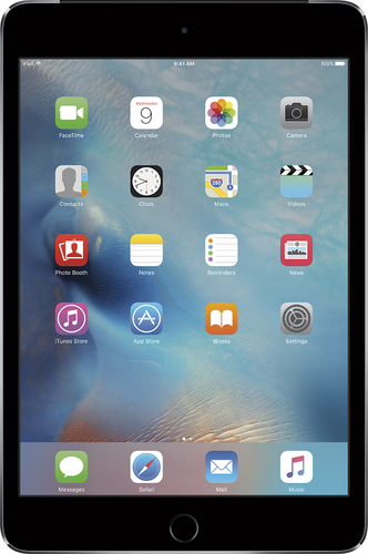 Apple - iPad mini 4 Wi-Fi + Cellular 16GB - Space Gray